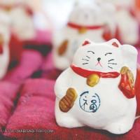Maneki Neko (Lucky cat)